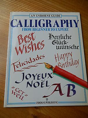 Usborne Guide to Caligraphy 1990