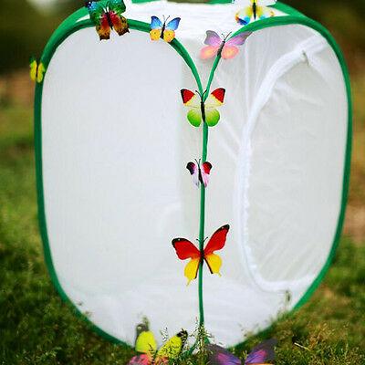 Garden Live Butterfly Storage Bag Portable Bug Insect Catch Carrier Fold Net