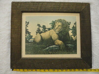 """Vintage 1971 Lion Print with Rustic Wood Frame (16"""" X 19"""") Stapco, NY"""