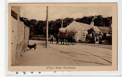 AT SPEIR'S BRIDGE, THORNLIEBANK: Glasgow postcard (C27015)