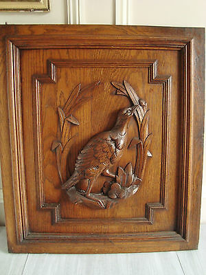 SUPERB ANTIQUE CARVED WOODEN BIRD PANEL DOOR FOR DECORATION 1900's GAME HUNT