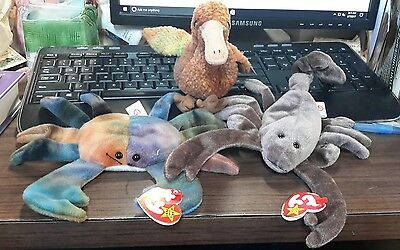 three ty beanie babies Claude stinger and Beak mint with tags