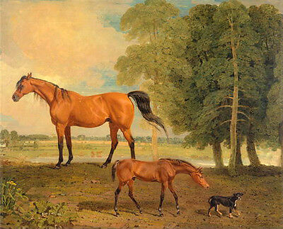 Hand painted oil painting nice animals red horse & her baby Foal little dog 36""