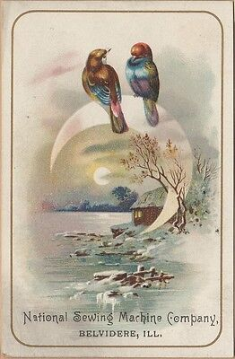 Victorian Trade Card-National Sewing Machine-Belvidere, IL-Colorful Birds-Moon