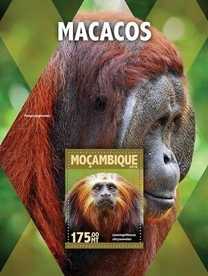 Z08 IMPERFORATED MOZ16112b MOZAMBIQUE 2016 Monkeys MNH
