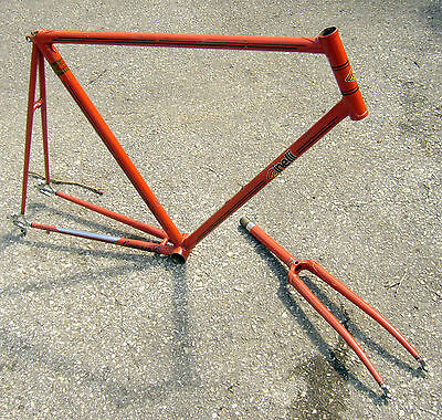 1960's Columbus Tubing Frame-Cinelli BB & Campagnolo Dropouts