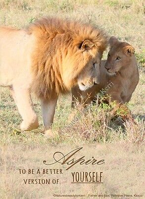 Inspirational Quote Fridge Magnet, Lion Photography, Fathers Day
