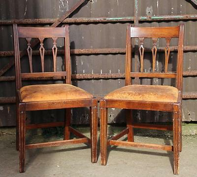 A Pair of Regency Carved Mahogany Dining or Hall Chairs
