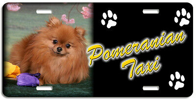 Pomeranian 1 Taxi Line License Plate (( LOW CLEARANCE PRICE ))