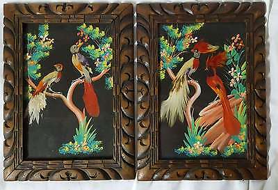Vintage Pair of Mexico Mexican Framed Watercolor & Real Feather Bird Pictures