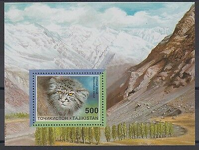 XG-BA990 TAJIKISTAN - Wild Animals, 1996 Wwf Set, Manul, Wild Cat MNH Sheet