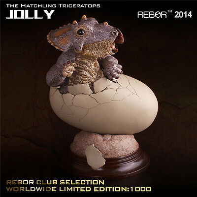 Rebor Dinosaur Collectables Hatchling Triceratops Jolly Limited Edition
