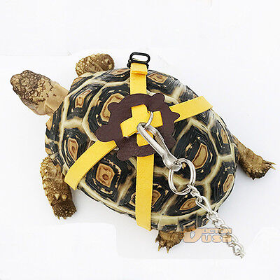 Leather Chest Collar Strap for Tortoise/Turtle Pet Walking Lead Control Rope