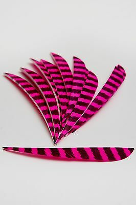 12 x 5in Parabolic Barred Turkey Feather Fletching
