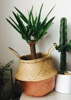Copper Rose Gold Seagrass Belly Basket Storage Plant Pot Collapsible Wicker