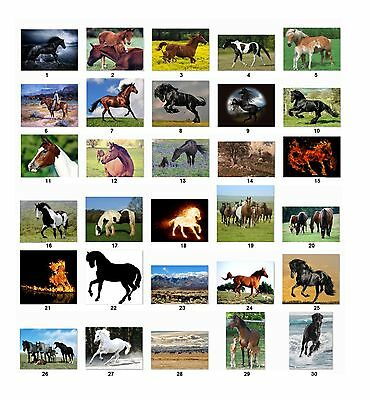 Personalized Return Address labels Horses Buy 3 get 1 free {h5}
