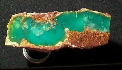 OCL - SPECTACULAR PREMIUM GRADE CHRYSOPRASE POLISHED SPECIMEN - .73 lbs
