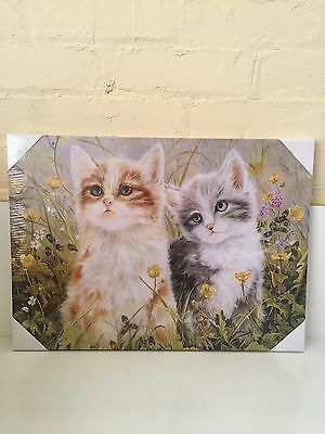 Cute Kitten Canvas Quality Cat Canvas Picture Wall Art
