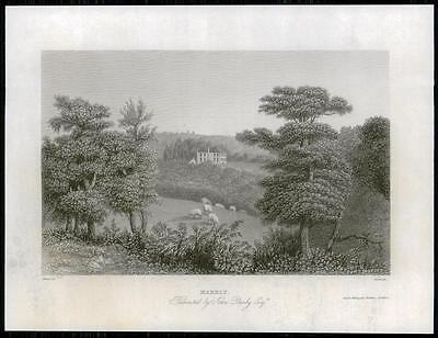 1835 SUSSEX Original Antique Engraving of MARKLY House Uckfield John Darby