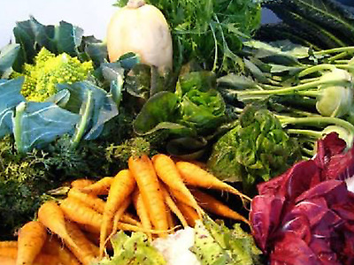 """Vegetable Seeds,""""COOL CLIMATE"""" Bulk Pack 12 Packets OVER 1100 Seeds"""