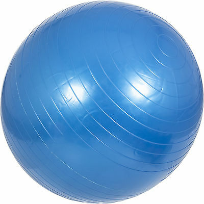 Ballon de gym - Swiss ball 65cm gris