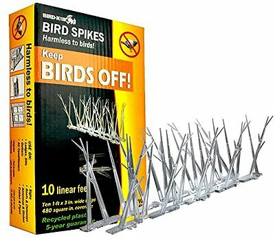 Bird-X, IncSP-10-NRPoly Bird Control Spikes Kit-10' POLY BIRD SPIKE KIT (t1T)