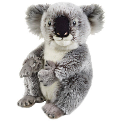 NEW National Geographic Koala