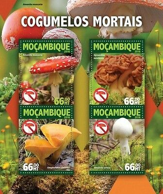 Z08 IMPERFORATED MOZ16104a MOZAMBIQUE 2016 Mushrooms MNH