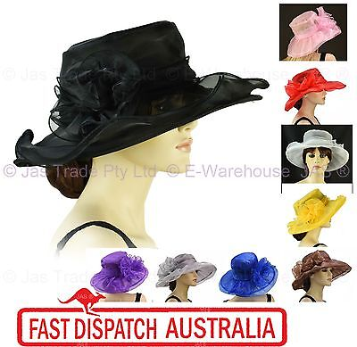 Spring Race Carnival Derby Day Church Wedding Women Ladies Organza Evening Hat