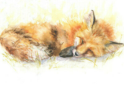 HELEN ROSE Limited SLEEPING FOX watercolour painting 414