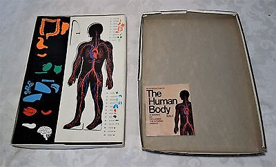 Vintage 1970'S Colorforms Classic Toy Science Human Body Anatomy Set
