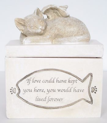 Angel Wings Sleeping Cat / Kitten Pet Memorial Box Ashes / Trinkets
