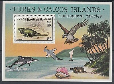 XG-AC059 TURKS & CAICOS IND - Reptiles, 1979 Wild Animals, Endangered MNH Sheet