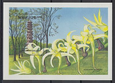 XG-AC446 SIERRA LEONE IND - Flowers, 1989 Orchids, Architecture MNH Sheet