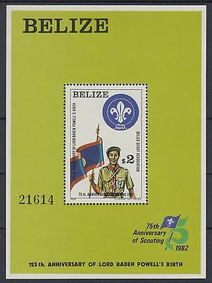 XG-AD833 BELIZE - Boy Scouts, 1982 Flags, Scounting Anniversary MNH Sheet