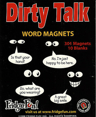 DIRTY TALK Word Magnets,never used, 301 magnets 10 blanks, Fridge Fun see photos