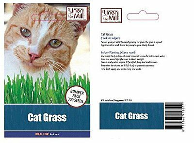 Grow Your Own Cat Grass Seed Pack (LARGE)