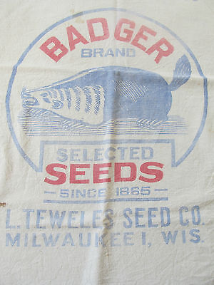 """Vintage Seed Sack BADGER SEEDS Brand - Canadian Brome Grass 24"""" x 37"""" closed."""