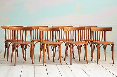8 Vintage MidCentury Thonet Style Bentwood Cafe Dining Kitchen Restaurant Chairs