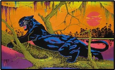 Black Light Jungle Cat Panther Color Canvas Textured Print Reproduction