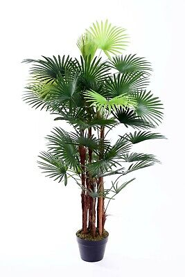Best Artificial 120cm 4ft SPIDER Finger PALM Tree Office PLANT Conservatory New