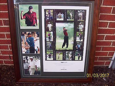 Tiger Woods Framed Limited Edition Numbered And Signed