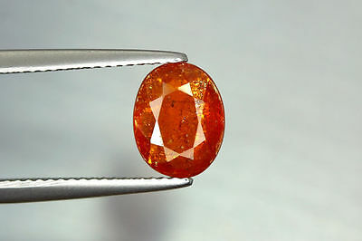 1.755 Ct Ultra!! Best Very Rarest Orange Color 100% Natural Unheated Kyanite !!!