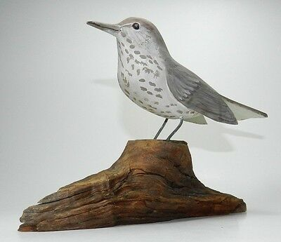 """Tolman Studios """"The Bird Cage"""" Hand Carved and Painted Wood Bird Sculpture"""