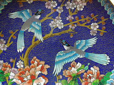 NIB The Ching-t'ai-lan ARTISTS WORKSHOP CLOISONNE PLATE Azure Winged Magpie