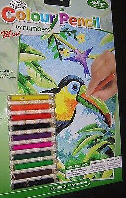 Colour By Numbers 10 Mini Pencils Art Kit Children Kids Toucan Bird Travel Craft