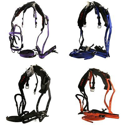 Single Synthetic Driving Webbing Horse Bridle Reins Cart Harness Pony Cob Full