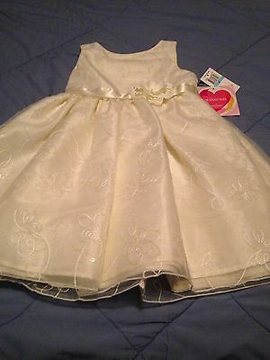NWT Youngland Size 5 Girls Sleeveless Tulle Embroidered Spring / Party Dress