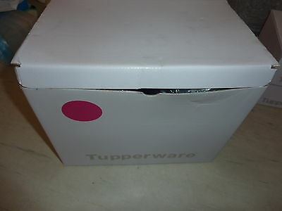 Tupperware Brand New! Pink Small Rectangle Modular Mate Set. 6 Pieces