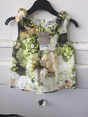 Baby Girls Ruffle Collar Top/Blouse 12-18 Months Next New With Tags